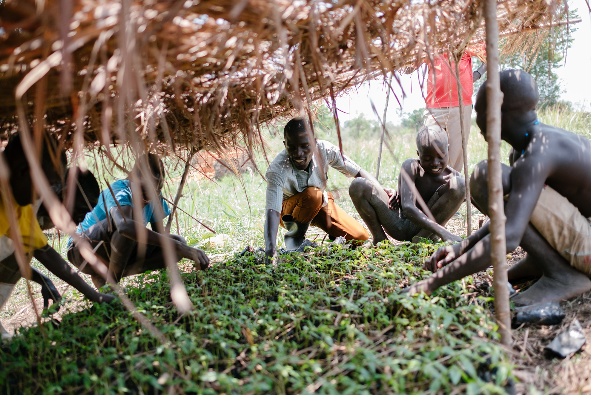 Uganda-2018-Ecosia--60-of-76--1
